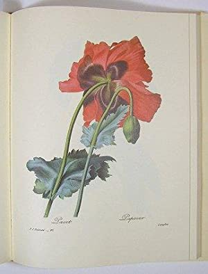 The Most Beautiful Flowers. 144 Engraved Color: REDOUTE, Pierre Joseph.