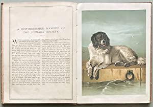 The Landseer Series of Picture Books. (Cover title: Pictures by Landseer.)
