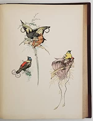 Art and Letters. An Illustrated Review. Second Volume. [with article Birds of Paradise, and much ...
