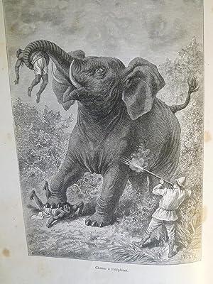 Un Hiver au Cambodge - Chasses au tigre, à l'éléphant et au buffle ...