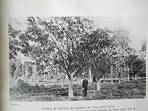 Institut des Recherches Agronomiques et Forestières - Compte-Rendu des Travaux - 1935-1936 -...