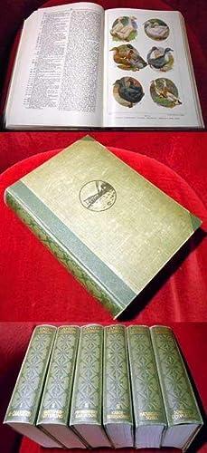 Landlexikon. Ein Nachschlagewerk des allgemeinen Wissens unter: Konrad zu Pulitz,