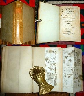 Philosophia Botanica in qua explicantur fundamenta botanica: Carolus (Carl von