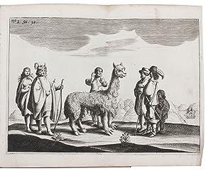 Journael ende historis verhael van de reyse: BROUWER, Hendrik.