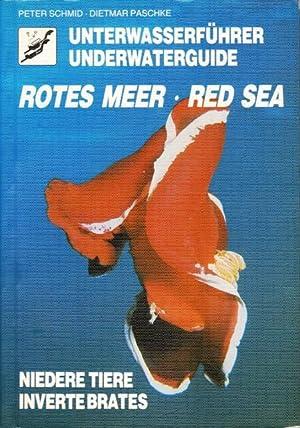 Unterwasserführer Rotes Meer. Niedere Tiere. Underwaterguide Red: Schmid, Dr. Peter