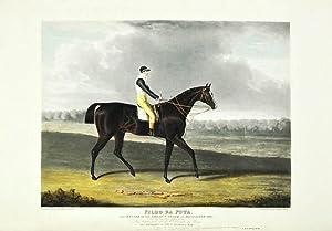 Portraits of the Winning Horses of the: Herring, John Frederick,