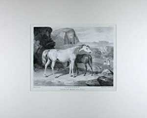 A collection of 8 original engravings and: Vernet, Carle, and