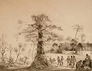 Brazilian jungle scene with Indians.