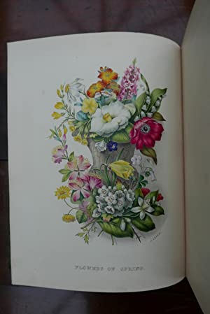 THE FLORAL ALBUM; or, Gathered Flowers, Chiefly from the Works of the British Poets.: Ackermann and...