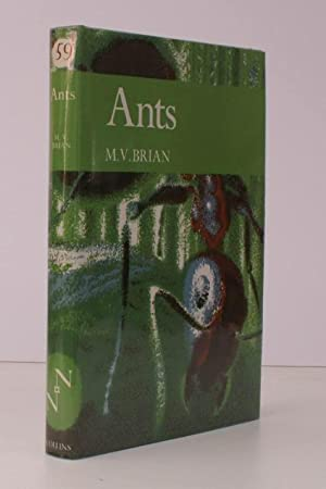 Ants. [New Naturalist 59]. NEAR FINE COPY IN UNCLIPPED DUSTWRAPPER: M.V. BRIAN