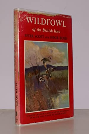 Wildfowl of the British Isles.: Peter SCOTT and Hugh BOYD.