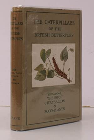 The Caterpillars of the British Butterflies including the Eggs, Chrysalids and Food-Plants. Edited ...