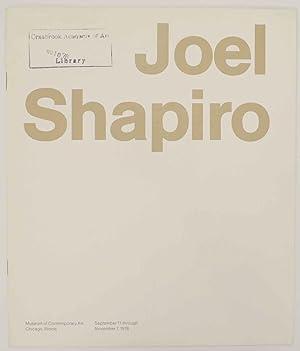 Joel Shapiro: SHAPIRO, Joel and