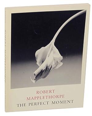 Robert Mapplethorpe: The Perfect Moment: MAPPLETHORPE, Robert, Janet