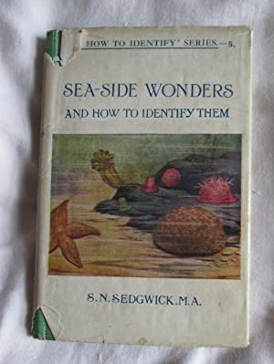 Seaside Wonders and how to Identify them
