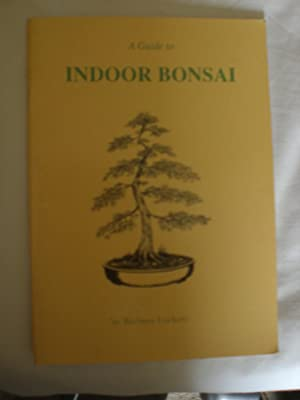 A Guide to Indoor Bonsai