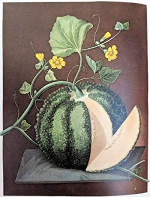 Great Flower Books, 1700-1900: A Bibliographical Record: SITWELL, Sacheverell (1897-1988)