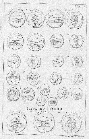 MONEDAS DE LA ESPAÑA ULTERIOR. LAMINA XXXVIII: ILIPA MAGNA (ALCALA DEL RIO). ILIPA ET SEARUM...