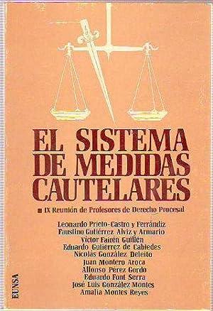 EL SISTEMA DE MEDIDAS CAUTELARES. IX REUNIÓN