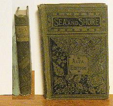 Sea and Shore: translated From The
