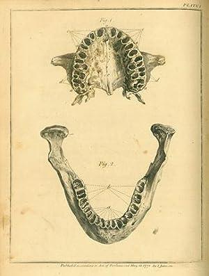 The natural history of the human teeth: Hunter, John
