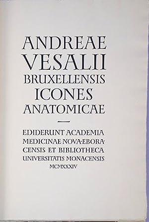 Icones anatomicae.: Vesalius, Andreas