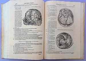 Andreae Vesalii anatomia: Addita nunc postremo etiam antiquorum anatome: Vesalius, Andreas