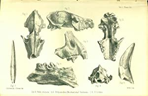 Palaeontological memoirs and notes of the late Hugh Falconer: Falconer, Hugh