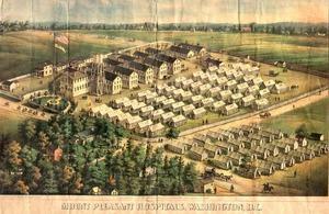 Mount Pleasant Hospitals, Washington, D.C. Hand-colored lithograph by C. Magnus. 35x47cm: Mount ...