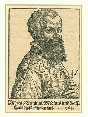Woodcut portrait of Vesalius attributed to Tobias: Vesalius, Andreas