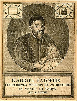 Celeberrimus Medicus et Astrologus. Engraved Portrait, emphasizing Fallopius's astrological ...