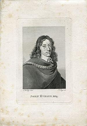 Engraved Portrait by J. Tookey after T. Worlidge: Evenlyn, John
