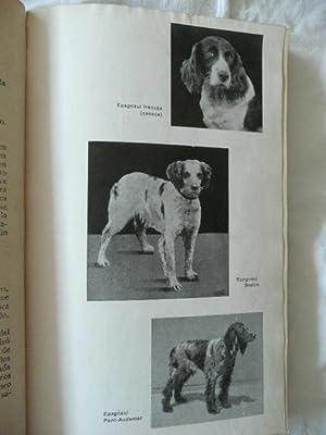 PERROS DE RASTRO Y PARADA. ( Antología del perro español ). Prefacio del Autor: Roig,...