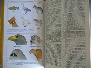 Atlas De Biologia: Vogel, Gunter y Angermann, Hartmut