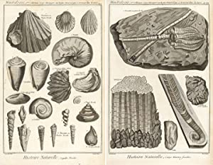 Histoire Naturelle, Regne Minéral (Fossils and Minerals)Encyclopédie,: Diderot, Denis.