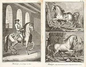 Manege et Equitation. Encyclopédie, ou dictionnaire raisonné: Diderot, Denis.