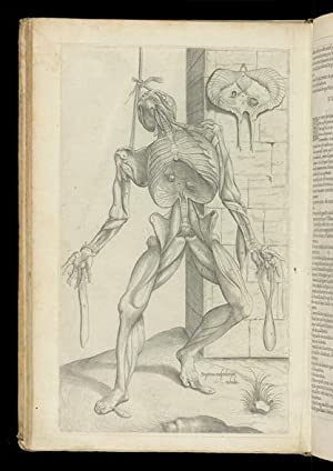 Les Portraicts Anatomiques de Toutes les Parties: VESALIUS, Andreas