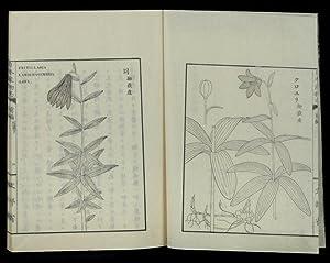 Nihon Sanbutsushi [trans.: Government Survey of the: ITO, Keisuke