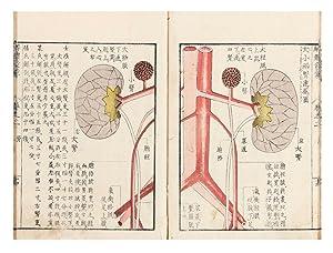 Kaitai hatsumo [trans: Explanation of Human Anatomy]: MITANI, Soshu