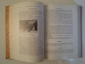 ENFERMEDADES DE LA INFANCIA (DOCTRINA Y CLÍNICA). Tomos I-II-III: Obra completa. Dr. SU&...