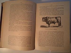 TRATADO DE GANADO VACUNO. Comprende: Estudio de la conformación y modo de ser de las reses ...