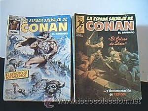 Gran lote 50 nºs: LA ESPADA SALVAJE DE CONAN EL BARBARO. Serie Oro. Planeta Comic y Comics ...
