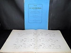 Etude sur la Locomotion du Cheval et: LENOBLE DU TEIL,