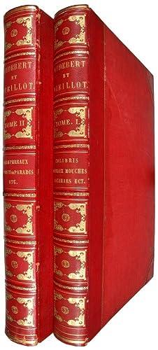 Oiseaux Dorés ou à Reflets Métalliques. Histoire: AUDEBERT, J.B. &