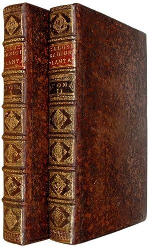 Rariorum plantarum Historia. Antwerp, Officina Plantiniana apud: CLUSIUS, C.
