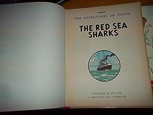 TintinRed Sea Sharks