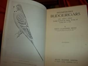 Incomparable Budgerigars: Frudd