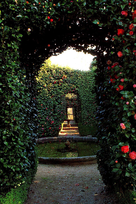 Secret Garden First Edition AbeBooks