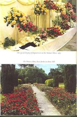 The Rose Annual, 1964 [Future Of The: E B Le