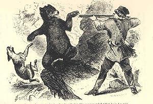 Wild northern scenes : or, Sporting adventures: Hammond, S. H.